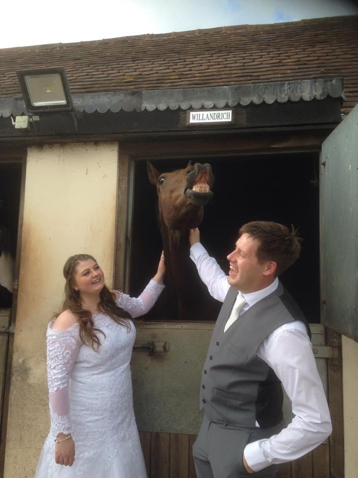 G&L Alcott Celebrant Wedding Horse