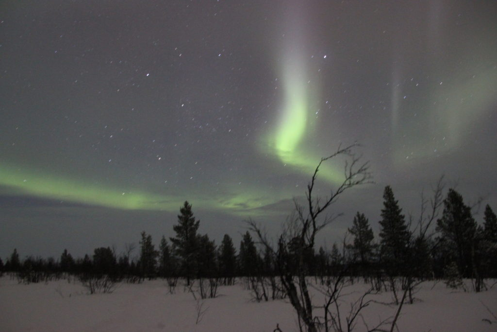 Lapland Northern Lights Just Celebrations Celebrant